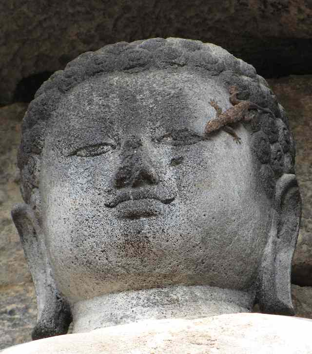 photo of a Buddha statue with a lizard crawling on the face