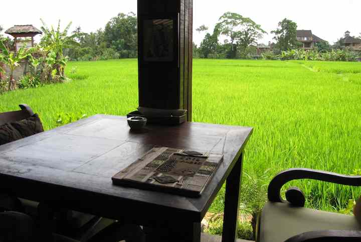 photo of my table with rice field in the background