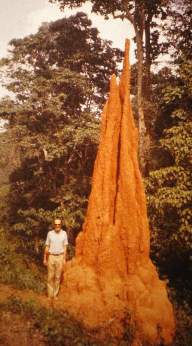 Bill Hunter by 25 foot termite mound