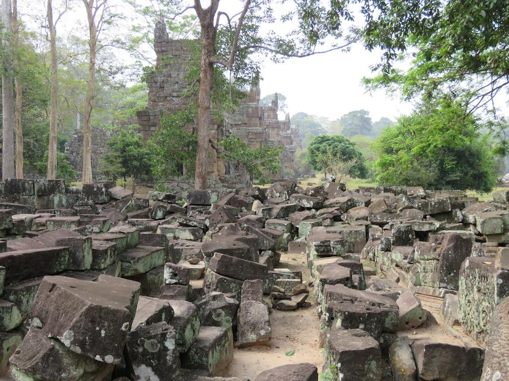 Many stones laid out in the jungle that used to make a stone temple